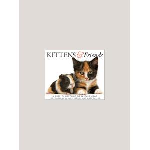 "2022 Kittens & Friends 5.25"" x 4.25"" PAGE PER DAY CALENDAR"