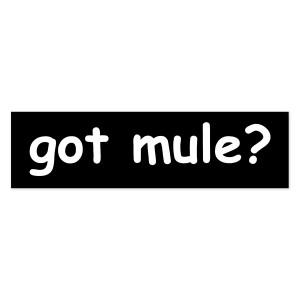 Gov't Mule Sticker