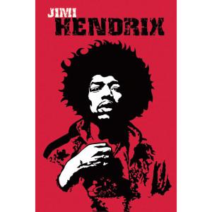 Jimi Hendrix Revolution Poster