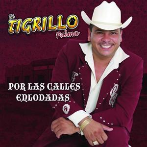 El Tigrillo Palma - Por Las Calles Enlodadas - MP3 Download