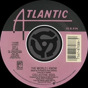 Collective Soul - The World I Know / Smashing Young Man [Digital 45] - MP3 Download