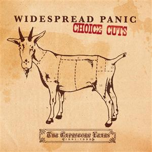 Widespread Panic - Choice Cuts: The Capricorn Years 1991-1999 - MP3 Download