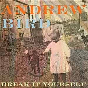 Andrew Bird - Break It Yourself - MP3 Download