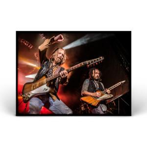 Tom Petty & The Heartbreakers - Arrington, VA 2014