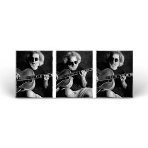 Jerry Garcia w/ Guitar - 9/2/93