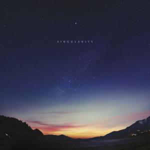Singularity Vinyl