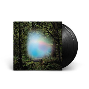 Ghosts of the Forest 2-LP Vinyl