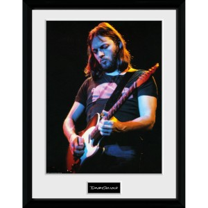 "David Gilmour Live Photo 12"" x 16"" Collector Print"