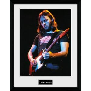 "David Gilmour Live Photo 12"" x 16"" Collector Print"