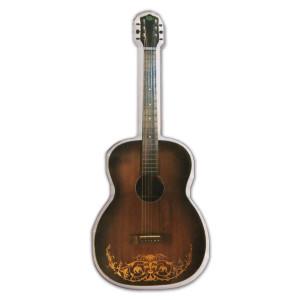 Steve Kimock Guitar Magnet