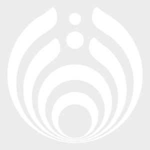 White Emblem Vinyl Decal