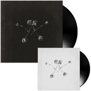 "Waterstrider Vinyl LP + 7"" Bundle"