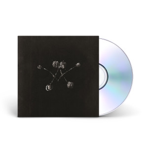Waterstrider - Nowhere Now CD