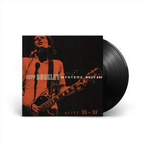 Mystery White Boy 2-LP