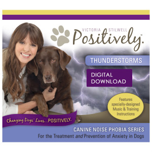 Thunderstorms Download - Canine Noise Phobia Series