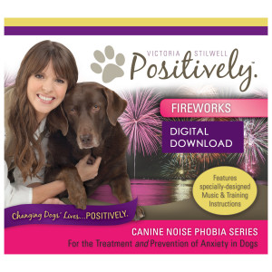 Fireworks Download - Canine Noise Phobia Series