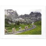 Tour of Switzerland 2011