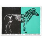 GPN Fall Lithograph - Philadelphia PA 11/15/2012