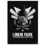 Linkin Park Girl Poster