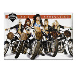 Pussycat Dolls Doll Domination Poster