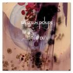 Silversun Pickups Swoon CD