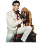 Elvis Presley Kissin' Cousins Blank Greeting Card