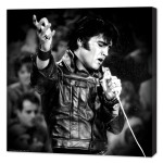 Elvis '68 Special Mini Stretched Canvas