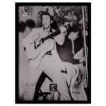 """Elvis Presley """"Hound Dog"""" Framed Wall Art With Postage Stamp"""