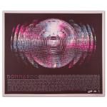 2014 Bonnaroo Mirrorball Poster