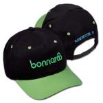2014 Bonnaroo Flat Brim Cap