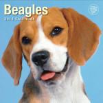 Beagles 2015 Wall Calendar