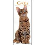 Cats 2015 Wall Calendar