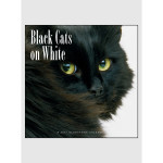 Black Cats on White 2017 <br/> 12&quot; x 12&quot; Wall Calendar