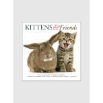 Kittens &amp; Friends 2017 <br/> 7&quot; x 7&quot; Mini Calendar