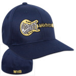 Warren Haynes Green Guitar Flexfit Hat
