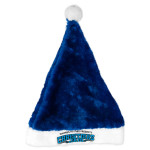 Warren Haynes Christmas Jam 25 Santa Hat