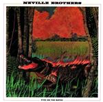 Neville Brothers - Fiyo On The Bayou - MP3 Download