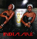 India.Arie - TESTIMONY VOL. 2:  LOVE & POLITICS - MP3 Download
