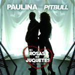 Paulina Rubio - Ni Rosas, Ni Juguetes - Mr. 305 Remix - MP3 Download