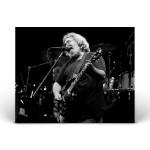 Grateful Dead - 11/8/87
