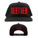 Seether 2013 Hat