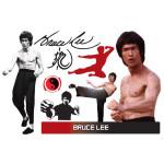 Bruce Lee Assorted WallJammers