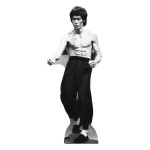 Bruce Lee Standup
