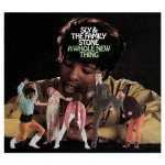 Sly & The Family Stone A Whole New Thing (Expanded Edition)CD
