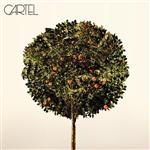 Cartel - Cartel - MP3 Download