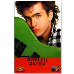 Dweezil Zappa - Havin' A Bad Day